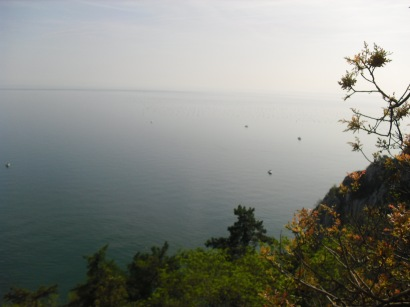 The UWC Adriatic sea-view
